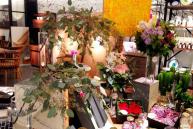 お花とインテリアのコラボレーション企画beijaflor meets LIVING HOUSE.