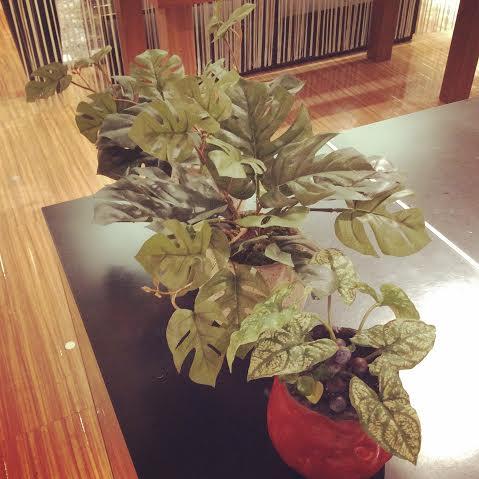 アートグリーン 夏 爽やか 観葉植物 フェイクグリーン