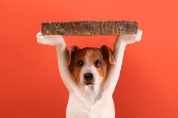 Side Table Animal Dog