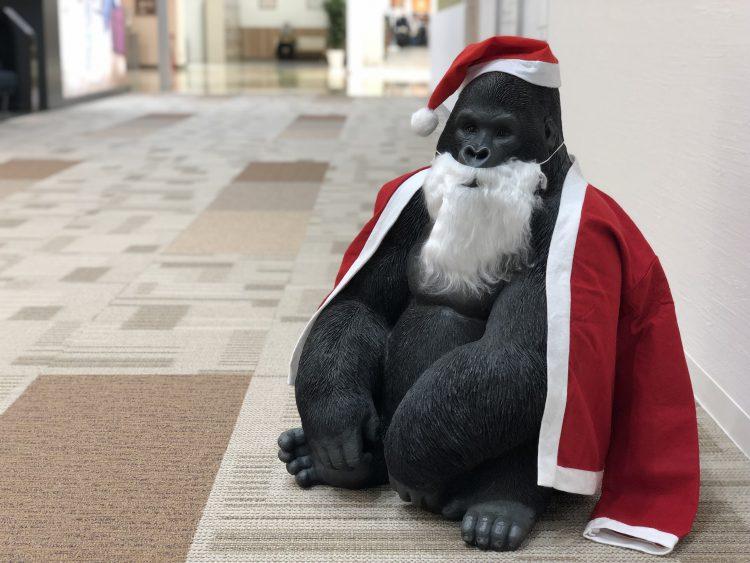 LIVINGHOUSE おしゃれ インテリア 家具 ゴリラ イケメン コスプレ 仮装 サンタ