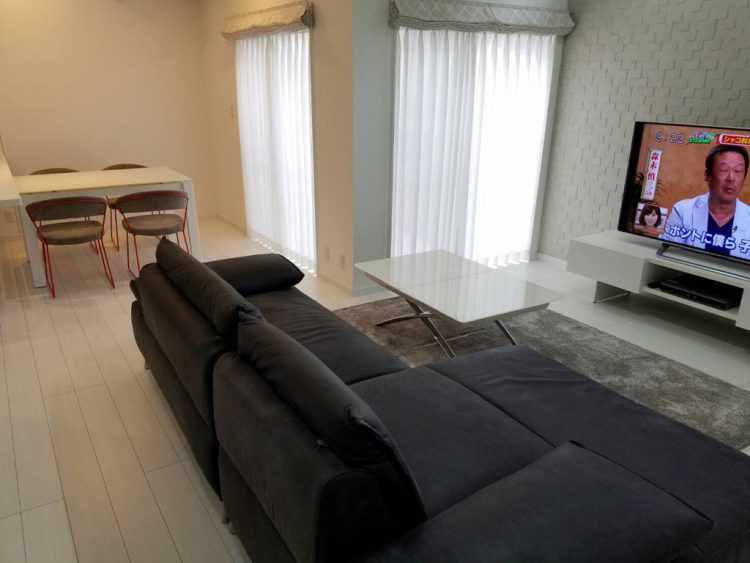 daining table, couch sofa, living table,TV board