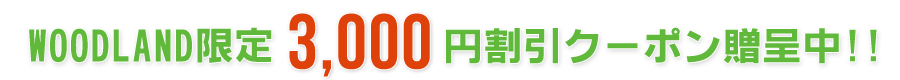 3000円割引クーポン