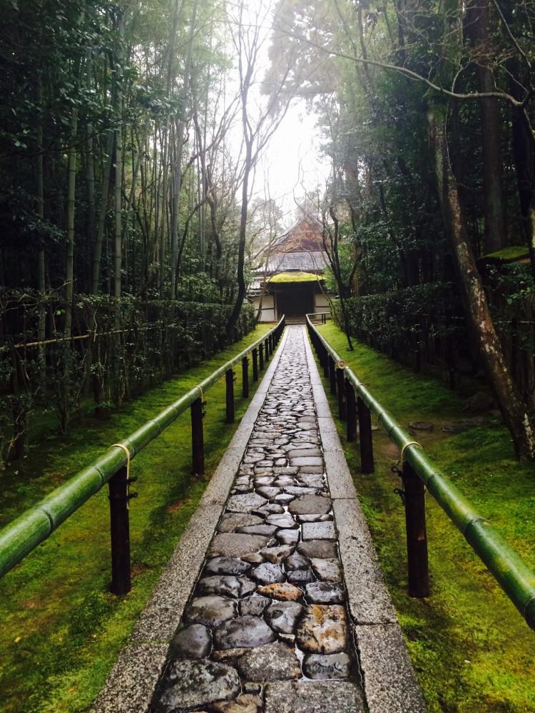 高桐院 京都 寺