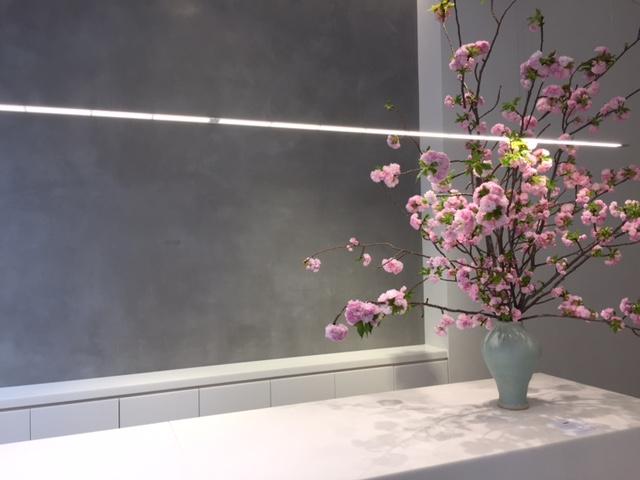 little shop of flowers