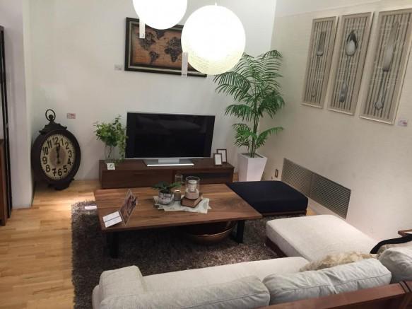 インテリア リビングハウス 家具 ソファ サイドテーブル 植物 観葉植物